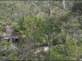 nsw_blue-mountains-042