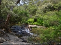 nsw_blue-mountains-057