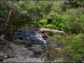 nsw_blue-mountains-058