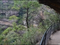 nsw_blue-mountains-086