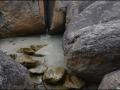 wa-greenpools-elephantrocks-22