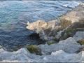 wa-rottnest-island-085