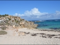 wa-rottnest-island-095