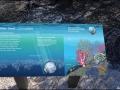 wa-shell-beach-031
