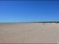 wa-shell-beach-061