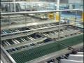 spc-fruits-factory-04