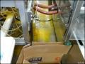 spc-fruits-factory-19