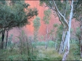 nt-trt-uluru-sunrisebasewalk-66