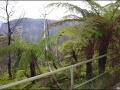 nsw_blue-mountains-142