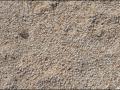 wa-hamelin-pool-stromatolites-031