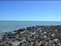 wa-hamelin-pool-stromatolites-121