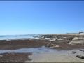 Hamelin Pool - Stromatolites