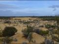 wa-pinnacles-desert-15