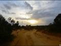 wa-pinnacles-desert-84