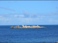 wa-rottnest-island-020