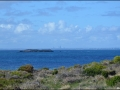 wa-rottnest-island-083