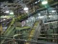 spc-fruits-factory-06