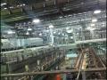 spc-fruits-factory-07