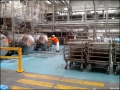 spc-fruits-factory-20