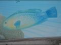 wa-turquoisebay-051